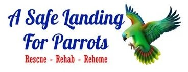 A Safe Landing for Parrots