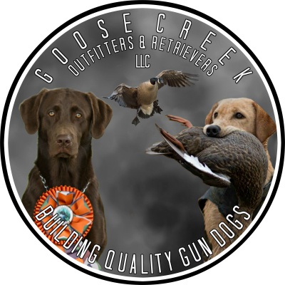 Goose Creek Outfitters & Retrievers