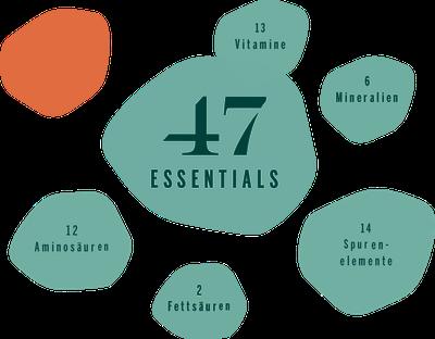 47 Essentials