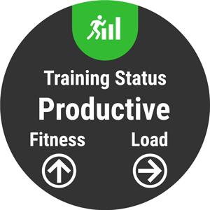 Training Status