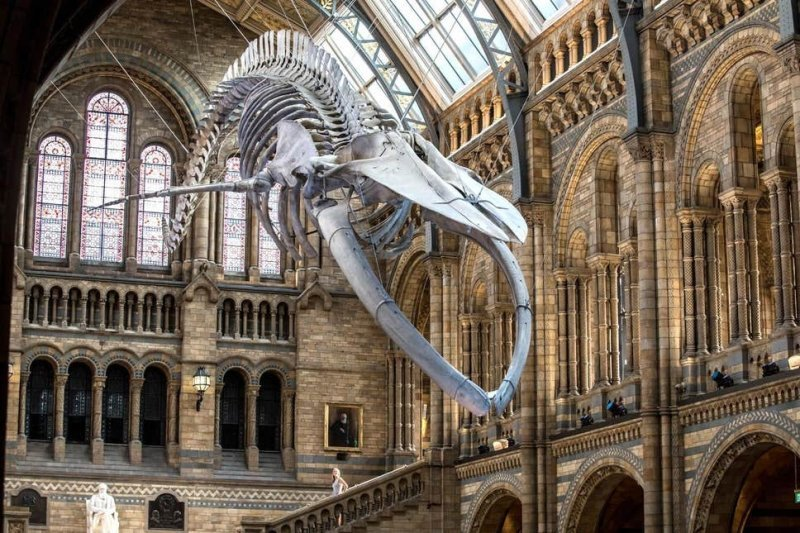 Top 27 Free Museums