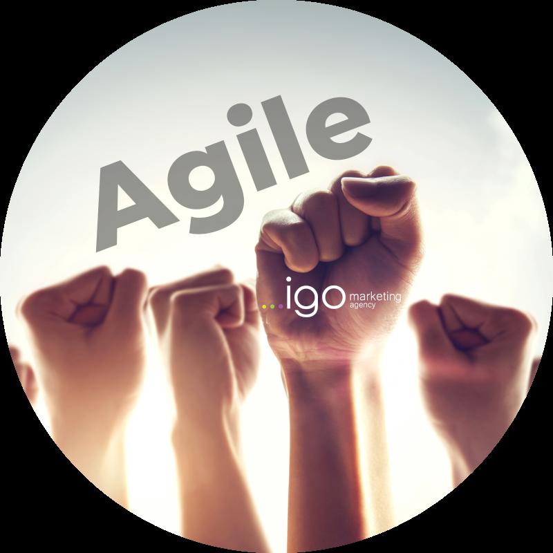 agile.igo