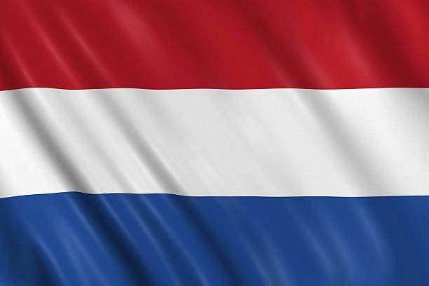 CV Néerlandais