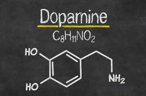 אוסנת ורטהיים רפלקסולוגיה-נעים להכיר דופמין