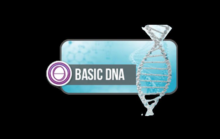 DNA Básico Presencial e Online