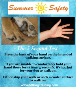 Dog Paw Safety