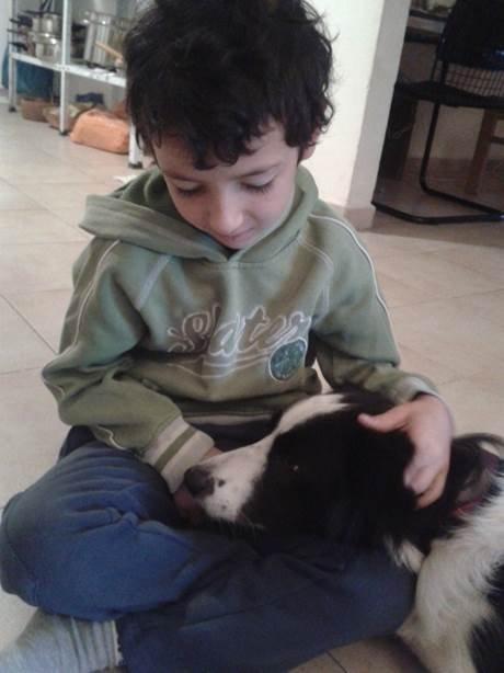 """""""קסם של כלב""""- טיפול וחינוך לילדים ונוער המשלב טיפול בעזרת כלבים וטיפול קוגניטיבי התנהגותי (CBT)."""
