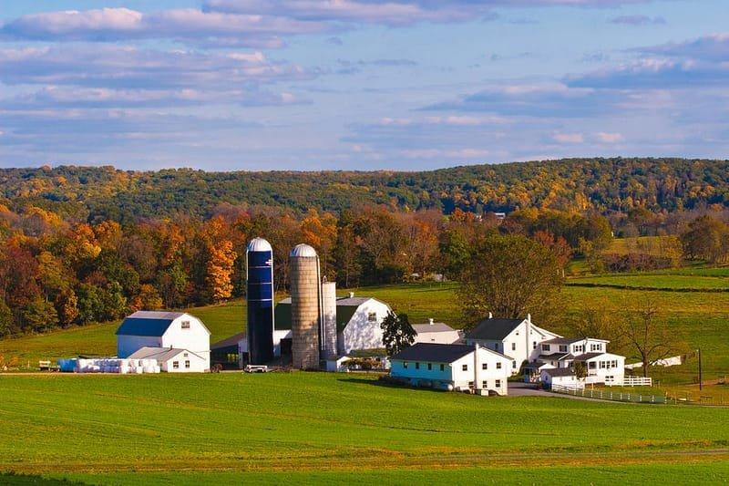 Philadelphia & Amish Area 1-Day Tour