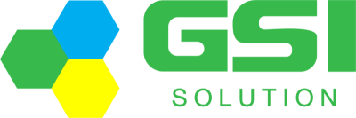 Global Solutions International