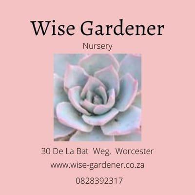 Wise Gardener