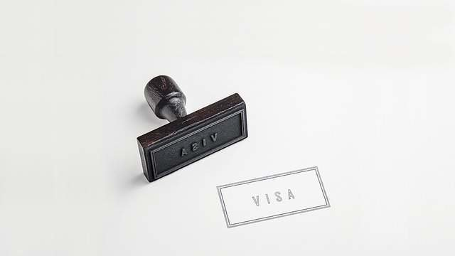 Study in Russia, visa process