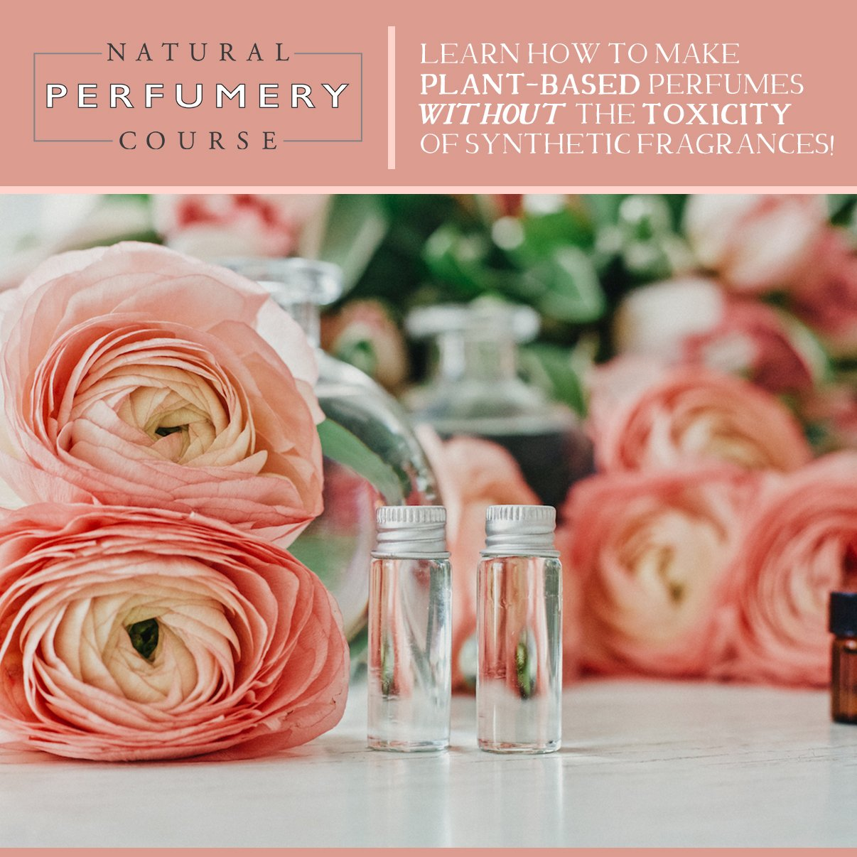 The Natural Perfumery Course will empower you to form a new type of relationship with plants that lets the plants speak for themselves with woodsy whispers, herbaceous harmonies and smoky secrets.