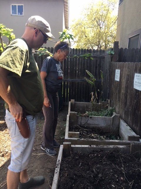 Compost is key to healthy soil