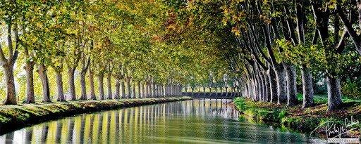 Canal du Midi, randonnées