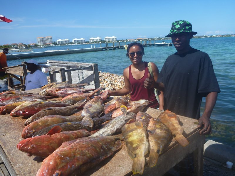 Data-limited tropical fisheries