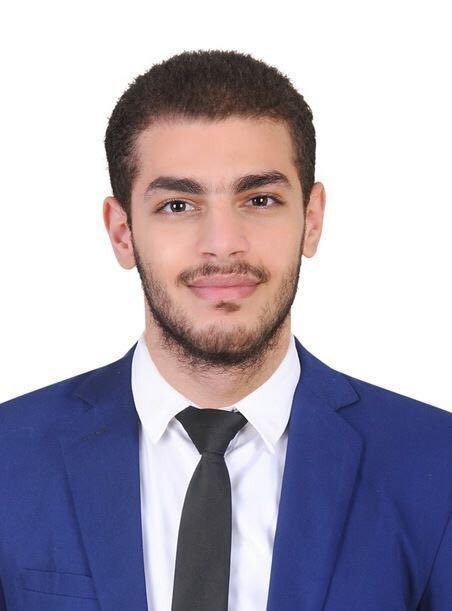 السيد محمود اللقاني