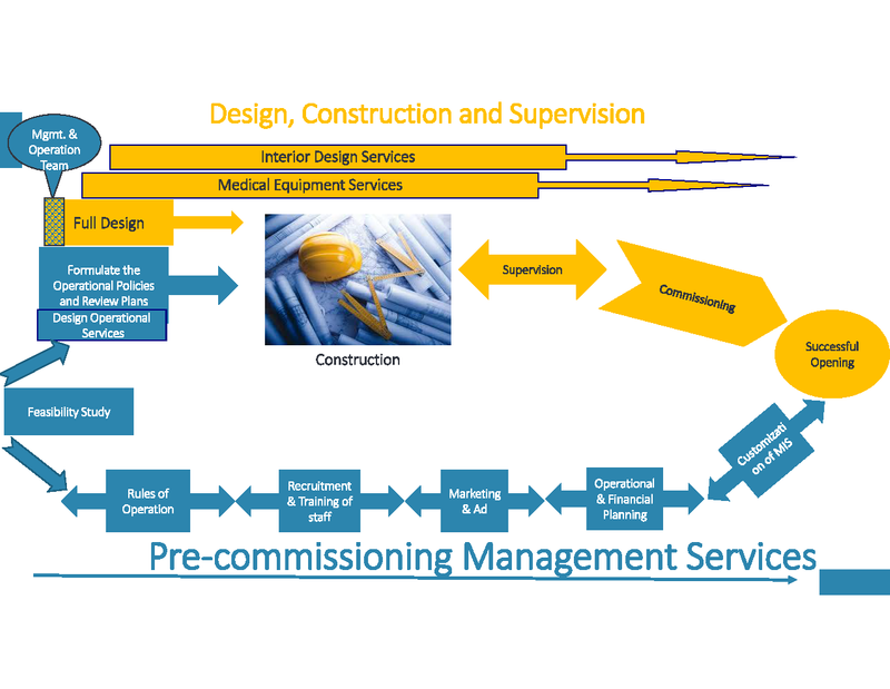 Pre-commissioning Management Services