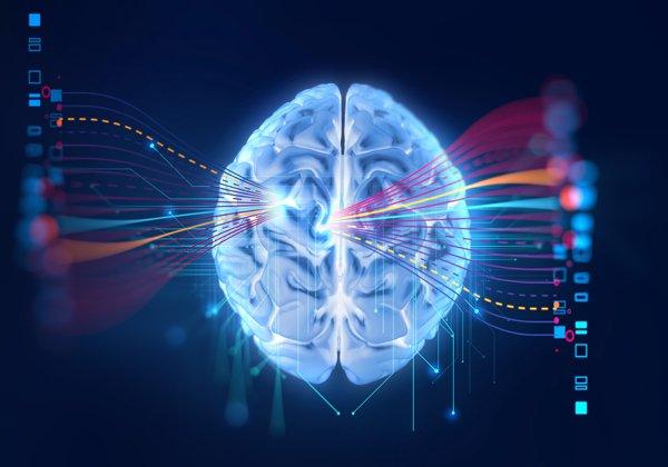 """""""מידע עלי שאני לא יודע"""" אינטלגנציה מלאכותית בשימוש חברות מסחריות"""