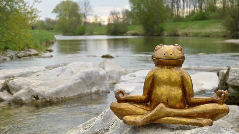 Mindful Ayurveda's Meditation