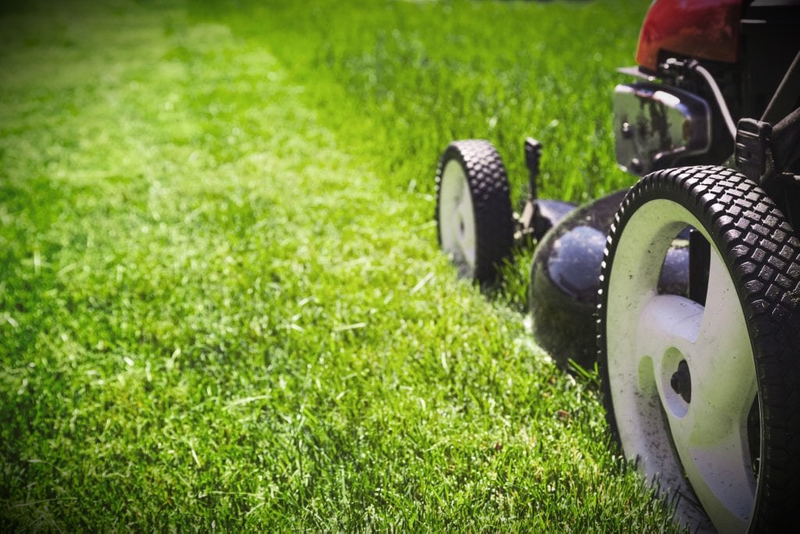COMMERCIAL / DOMESTIC LAWN MOWING GOLD COAST