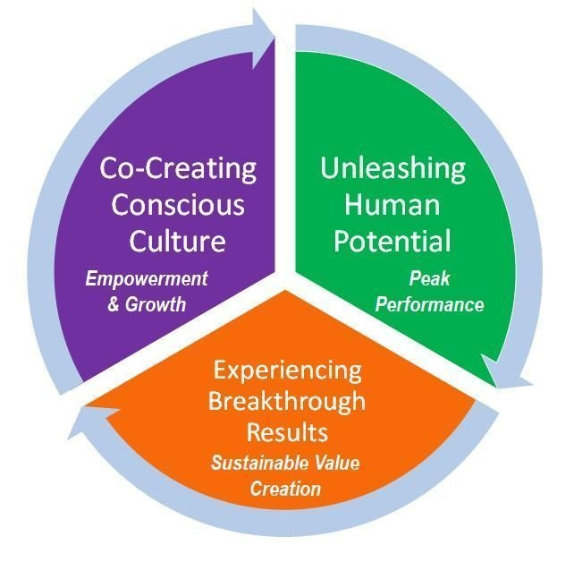 3. CONSCIOUS CULTURE WORKSHOP - 6 STEPS FRAMEWORK AS THE PATHWAY TO HIGH PERFORMANCE