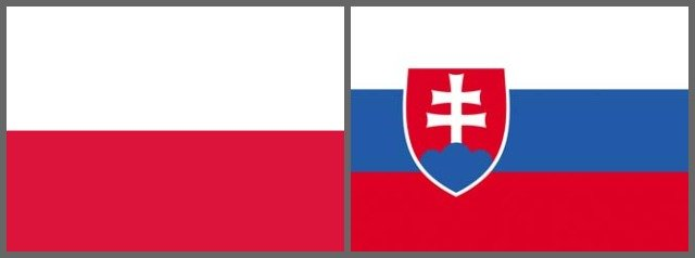 Book airport taxi transfer in St Petersburg for Poland VS Slovakia football game