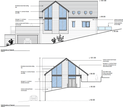 Infill house granted close to protected trees